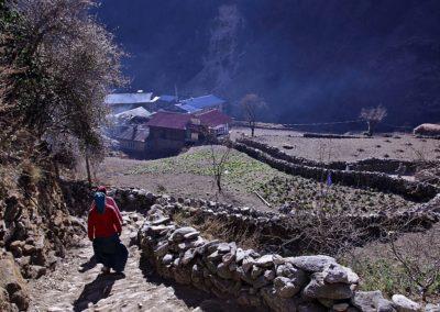 Im Khumbu