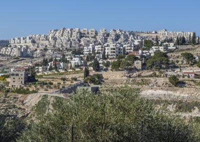 Siedlungsbau bis an die Grenze