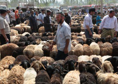 Viehmarkt Kashgar1