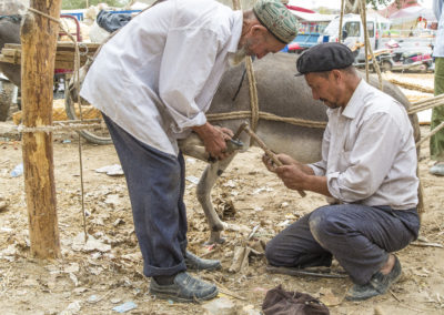 Viehmarkt Kashgar3