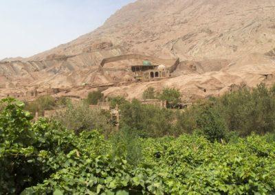 Weinanbau in der Taklamakan